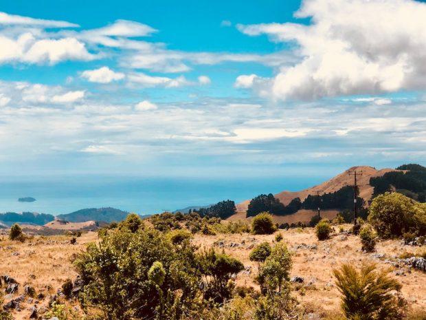 Blick auf Takaka, Neuseeland, Blick auf's Meer beim Wandern