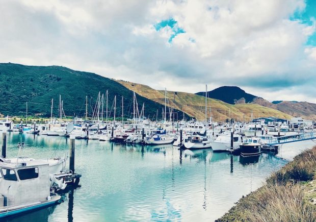 Marina und Boote in den Marlborough Sounds, Hafen